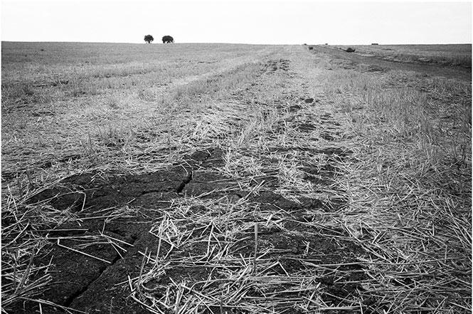 Επιφάνεια: Έκθεση φωτογραφίας της Μαρίας Μπουρμπού