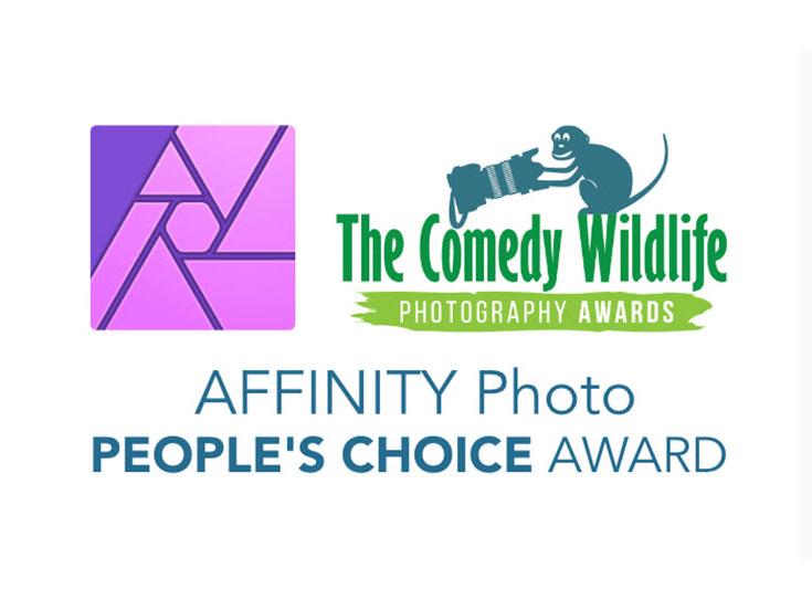 Ψήφισε για το βραβείο κοινού των Comedy Wildlife Photography Awards 2019 (και κέρδισε ένα iPad)