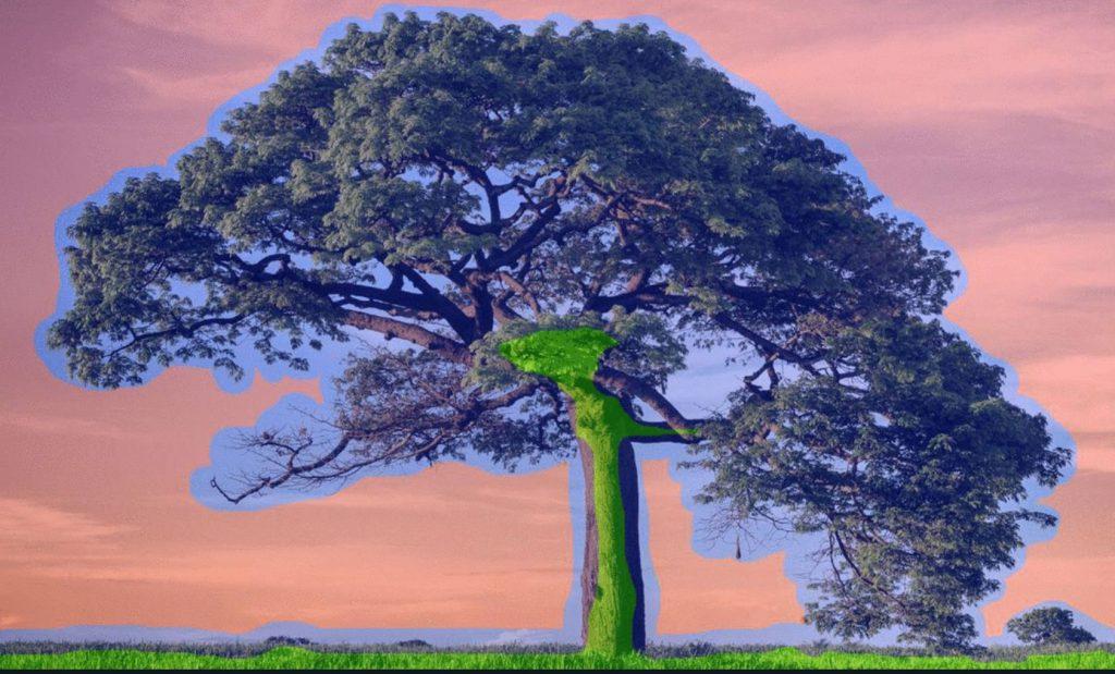 Topaz Mask AI: Νέο plugin τεχνητής νοημοσύνης για τις επιλογές σας στο Photoshop
