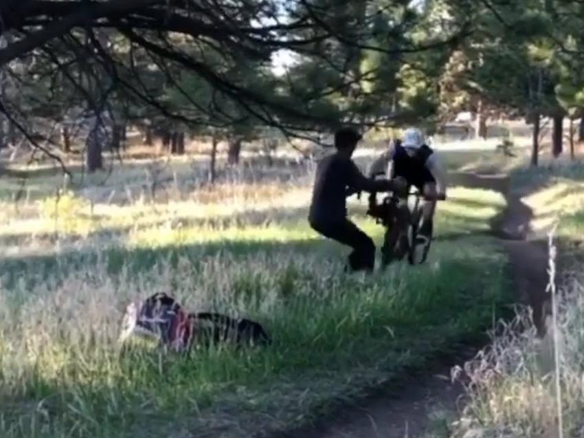 Ποδηλάτης πέφτει με μεγάλη ταχύτητα πάνω σε βιντεογράφο [βίντεο]
