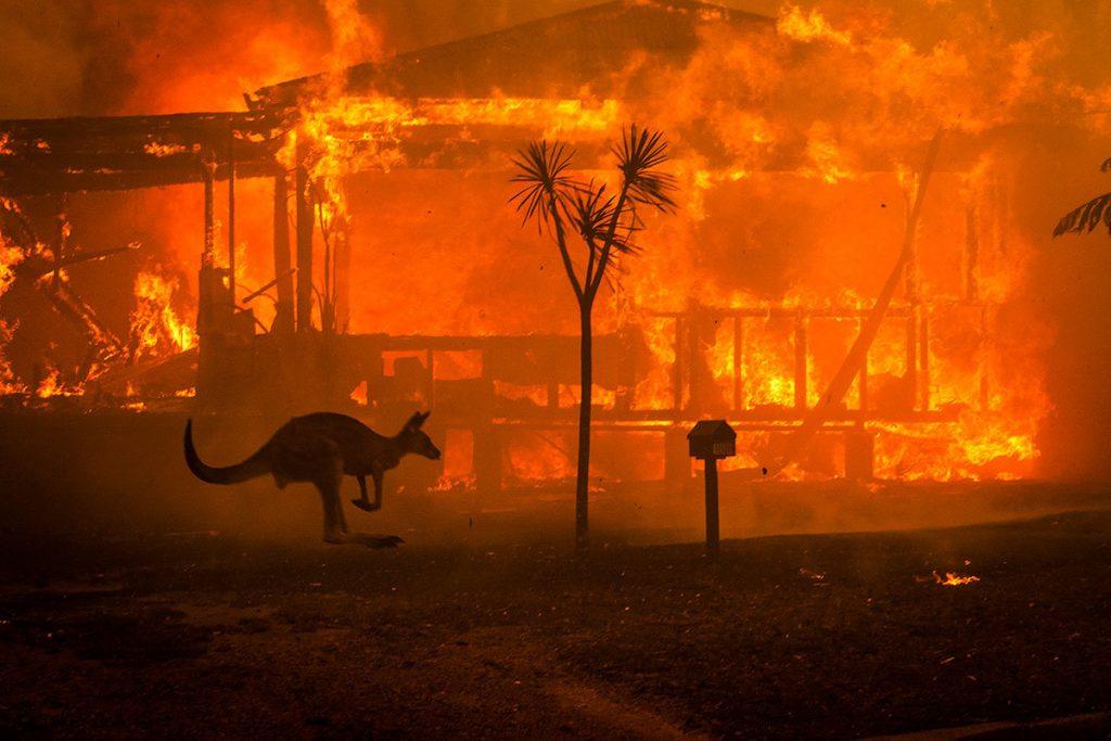 Η ιστορία πίσω από την πιο αντιπροσωπευτική εικόνα του δράματος με τις φωτιές στην Αυστραλία