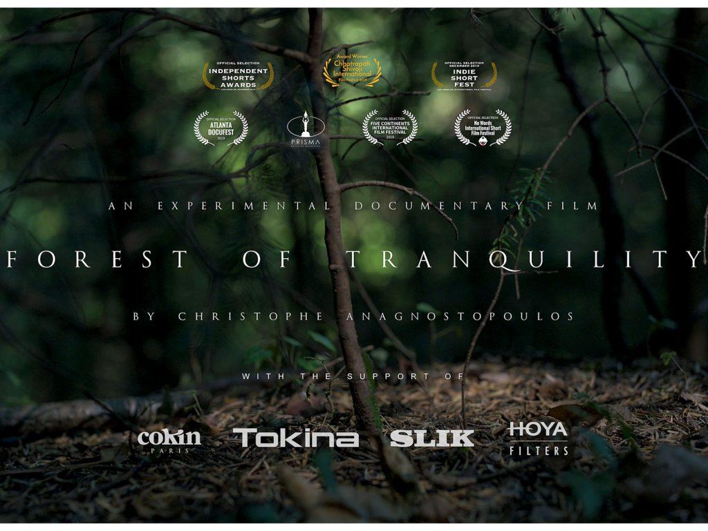 Forest of Tranquility: Η ομορφιά της Ηπείρου στο νέο ντοκιμαντέρ του Χριστόφορου Αναγνωστόπουλου!