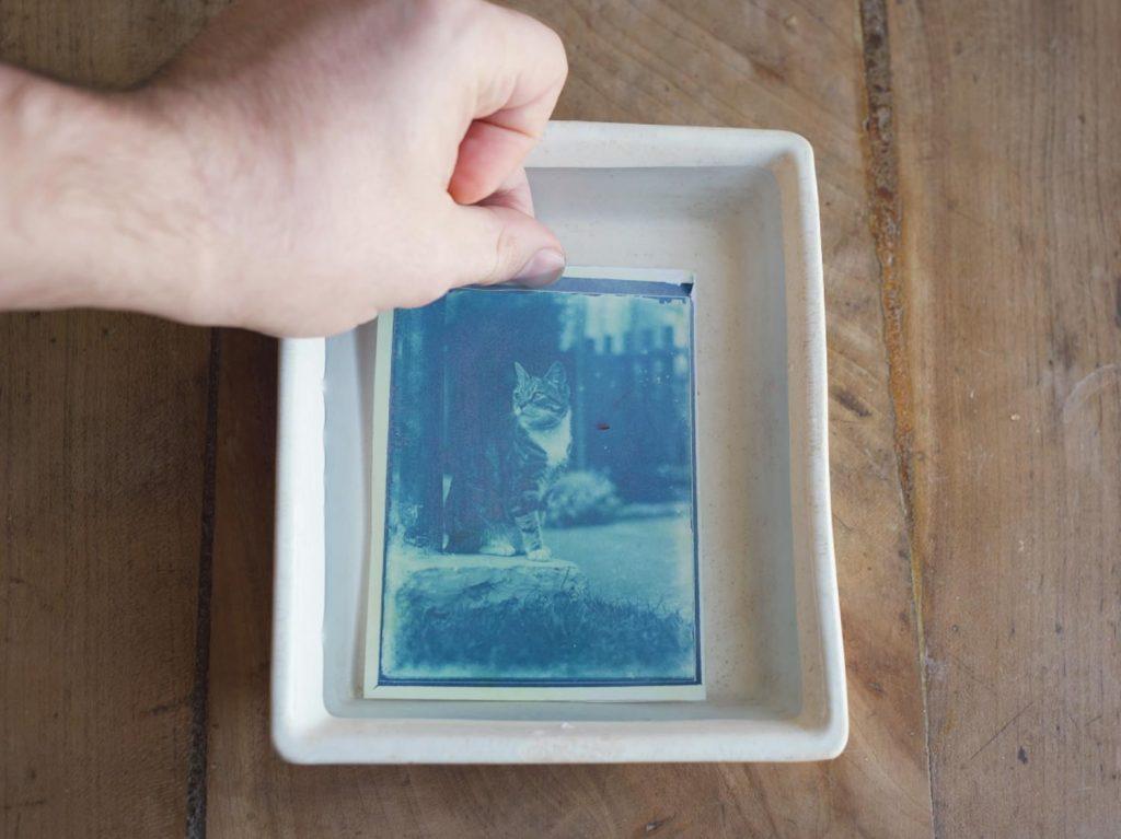 Φωτογράφος εμφανίζει φωτογραφίες ηλικίας 120 ετών με την μέθοδο της Κυανοτυπίας!