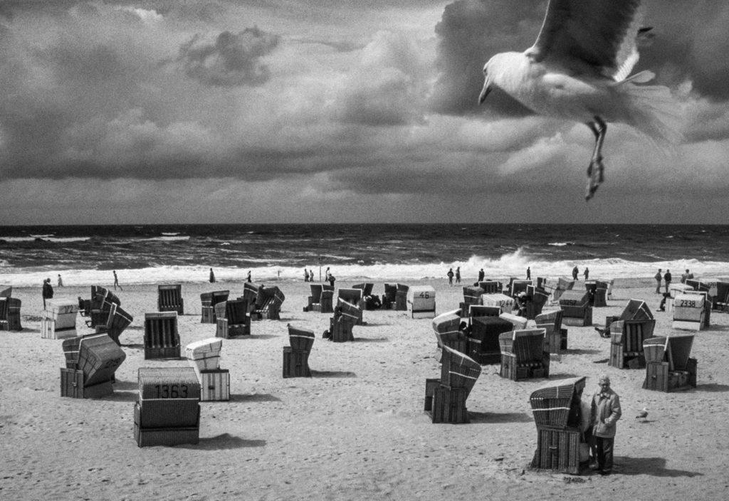 Μόνος στο Δάσος: Δες online και δωρεάν το ντοκιμαντέρ για τον φωτογράφο Κωνσταντίνο Πίττα και τις εικόνες του