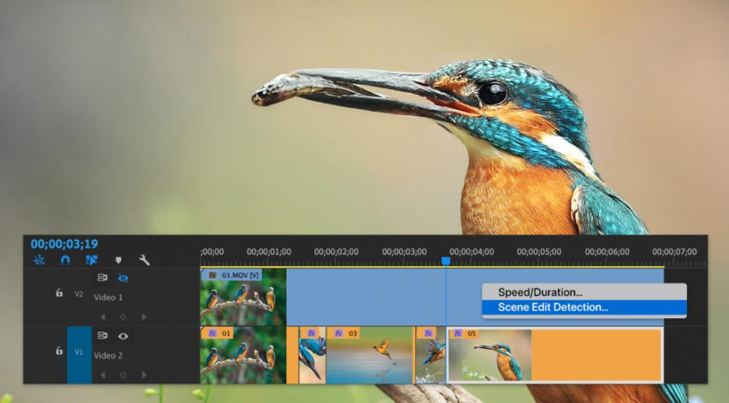 Adobe Premiere Pro:  Αναβάθμιση προσθέτει λειτουργία ανίχνευσης σκηνών και βελτιωμένο HDR