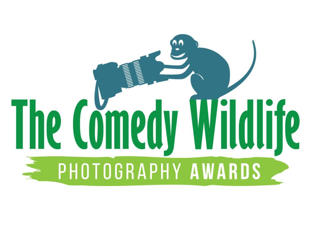 The Comedy Wildlife Photography Awards 2020: Αυτοί είναι οι μεγάλοι νικητές του πιο αστείου διαγωνισμού φωτογραφίας!