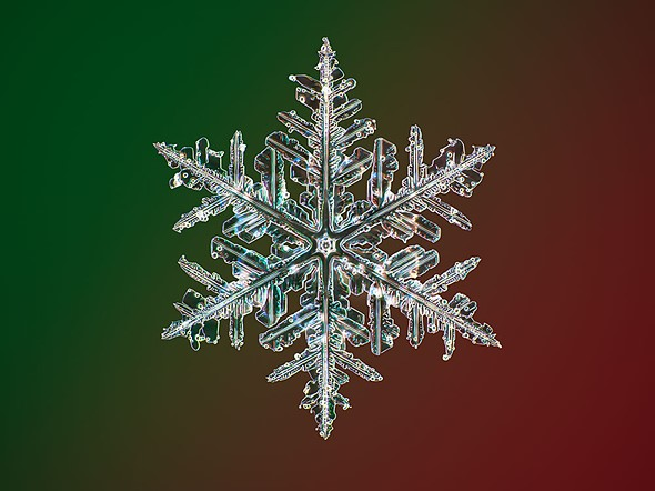 Αυτές οι νιφάδες χιονιού έχουν φωτογραφηθεί στη μέγιστη δυνατή ανάλυση!