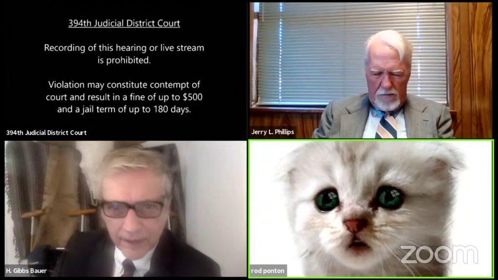 Δικηγόρος εμφανίζεται σε online δικαστική διαδικασία ως θλιμμένη γάτα!