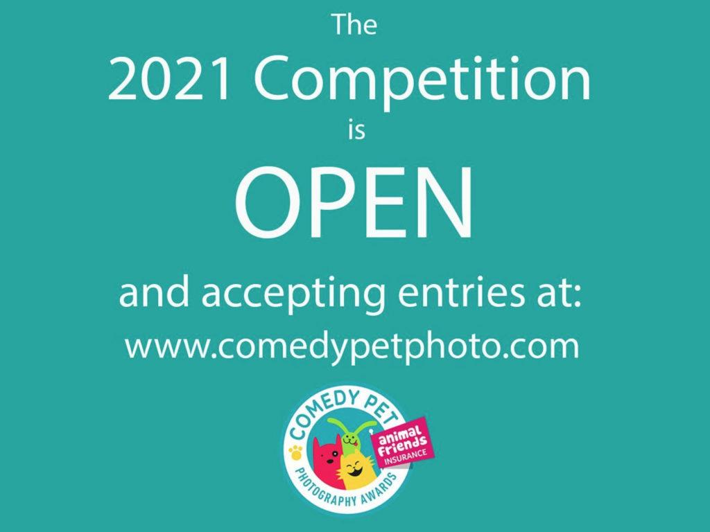 Animal Friends Comedy Pet Photo Awards: Δέχεται συμμετοχές ο διαγωνισμός αστείων φωτογραφιών για τα κατοικίδια μας