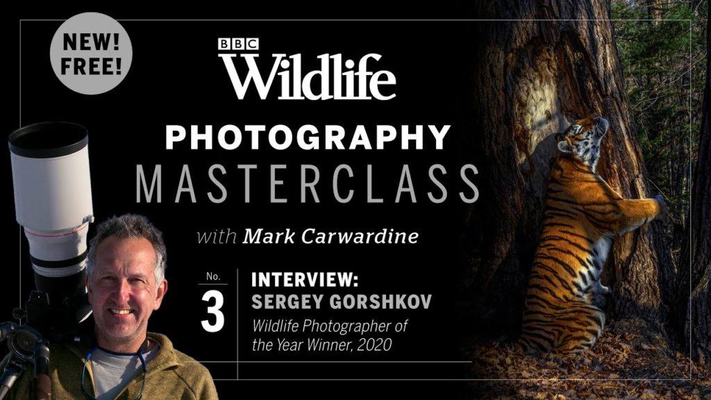 Sergey Gorshkov: Ο καλύτερος φωτογράφος άγριας ζωής για το 2020 μιλάει για την εικόνα του!