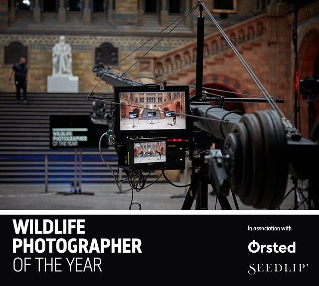 Σήμερα στις 22:00, ζωντανά, η απονομή των βραβείων Wildlife Photographer of the Year