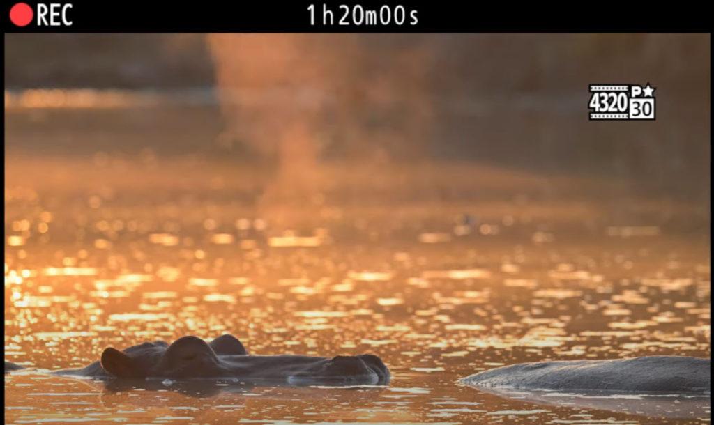Δημοσιεύτηκε επίσημα το δεύτερο teaser βίντεο της Nikon Z 9 αποκαλύπτοντας εγγραφή 8Κ 30p βίντεο μεγάλης διάρκειας!